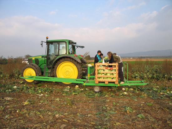 Preparazione del letto di semina padova hortech - Letto di semina ...