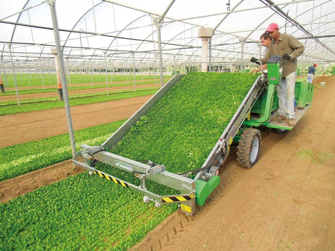 Macchine per raccolta padova slide valeriana horticulture